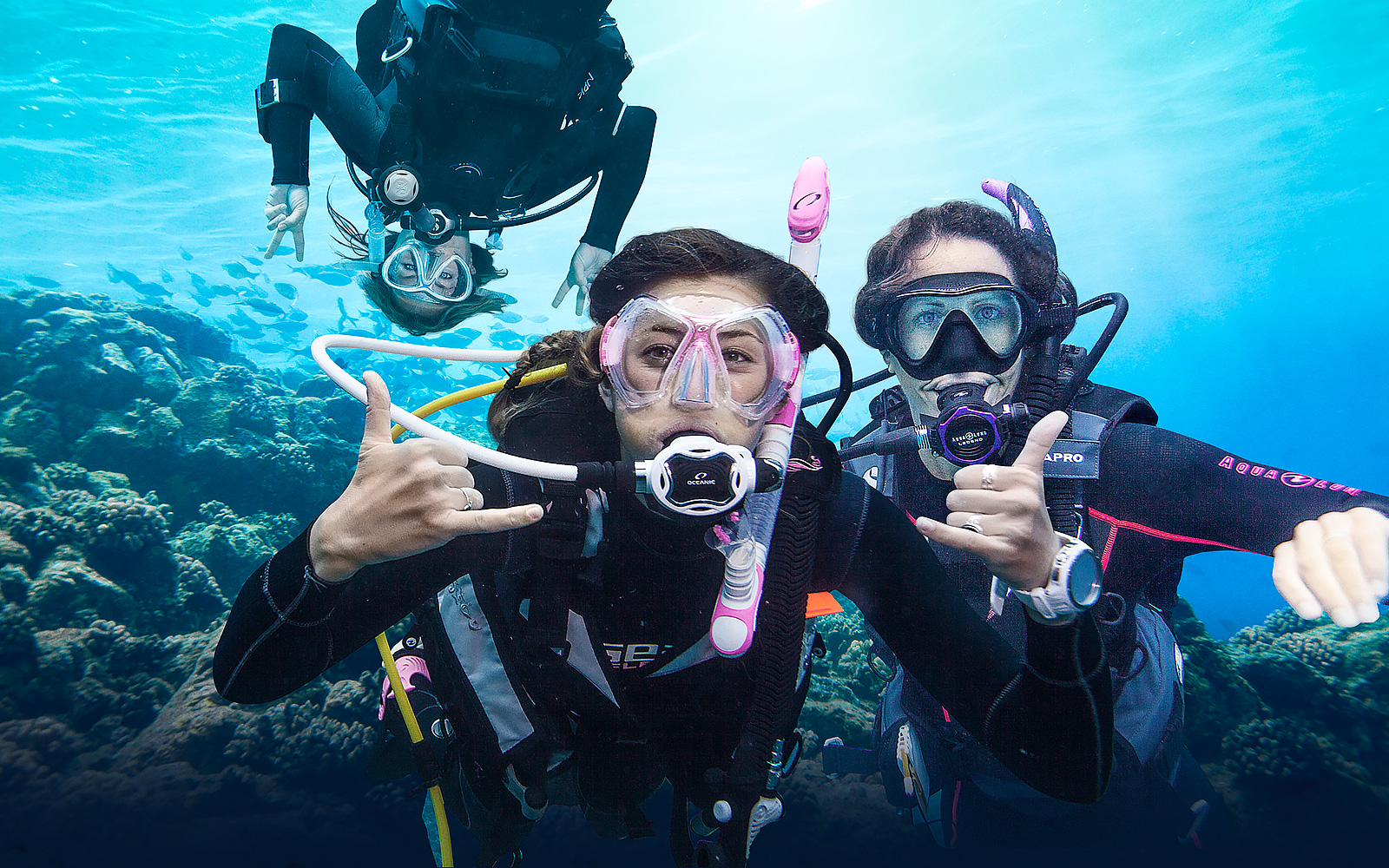 Learn to dive in sharm el sheikh at sharm plaza hotel